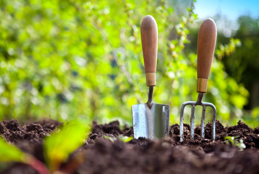 gardening tools in dirt